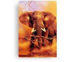 The African bush elephant (Loxodonta africana) Canvas Print