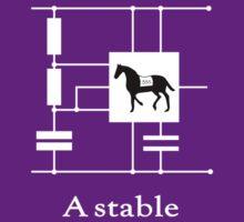 'A stable'  - Geek Slogan Tee by BlueShift