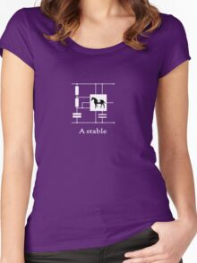 'A stable'  - Geek Slogan Tee Women's Fitted Scoop T-Shirt