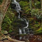 Buttermilk Falls - Tillmans Ravine by Stephen Vecchiotti