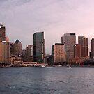 Sydney Skyline by Waqar