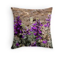 """""""Lupine in The Sun"""" Throw Pillow"""