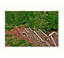 Stairway to a Mountain Forest Art Print