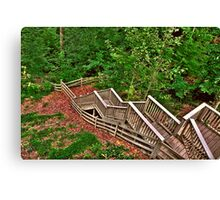 Stairway to a Mountain Forest Canvas Print