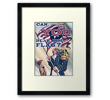 BioShock Infinite – Can You Bear the Flag? Framed Print
