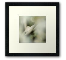 Beautifully, open little dreamy flower... Framed Print