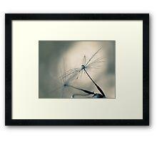 cradle Framed Print