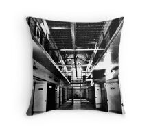 Cold, Hard Facts Throw Pillow