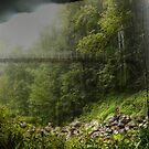 Crystal Shower Falls Pano by Michael Matthews