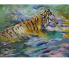 Tiger Reflections Photographic Print
