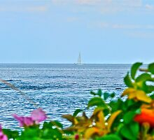 Sailing Out to the Block Island Sound - Narragansett Bay by Jack McCabe