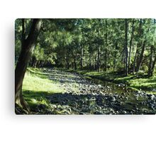 Warbro Brook Canvas Print