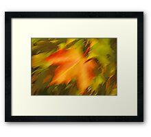 Mrs Maple Framed Print