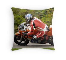 aberdare park july 2011 Throw Pillow