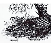 Wood Pile Sketch Photographic Print