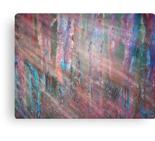Sunlight Filtering Through the Trees in the Forest Canvas Print