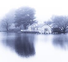 White out at Daylesford Lake by Andrew Wilson