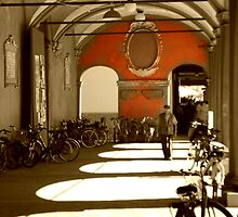 Bicycles in Bologna's sunset by andreaminerdo