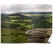 Meadow View ~ Combestone Tor Poster