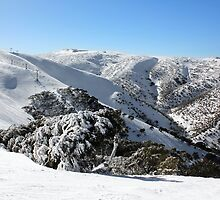 Hotham ski slopes by Charles Kosina