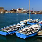 Summer Boats At Stonehaven by Bill Buchan
