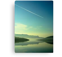 Flying Home Canvas Print