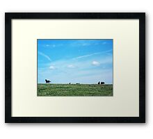 Dumb-ass Horses, Cheshire Framed Print