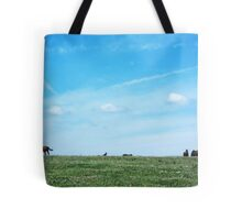 Dumb-ass Horses, Cheshire Tote Bag
