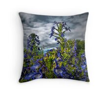 Looking To The Sky Throw Pillow