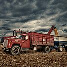The Old Grain Truck by Steve Baird