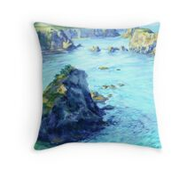South View Throw Pillow
