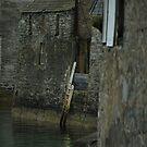 Venise du Nord by NordicBlackbird