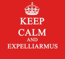 KEEP CALM & EXPELLIARMUS by ludlowghostwalk