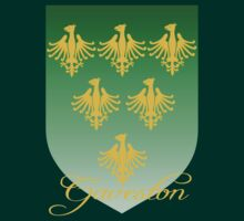 Gaveston coat of arms by Rowan  Lewgalon