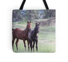 Horses on the Highway Tote Bag