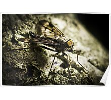 Gothic Fly Poster