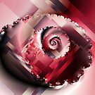 Abstract Rose Bud Spiral by plunder
