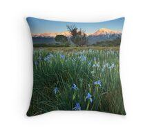 Eastern Sierra Iris Sunrise Throw Pillow