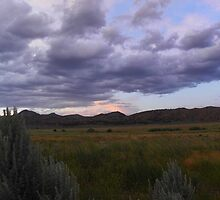 Sagebrush Country by BettyEDuncan