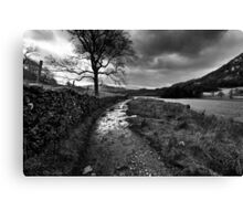 Wandering In The Lake District Canvas Print