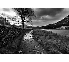 Wandering In The Lake District Photographic Print