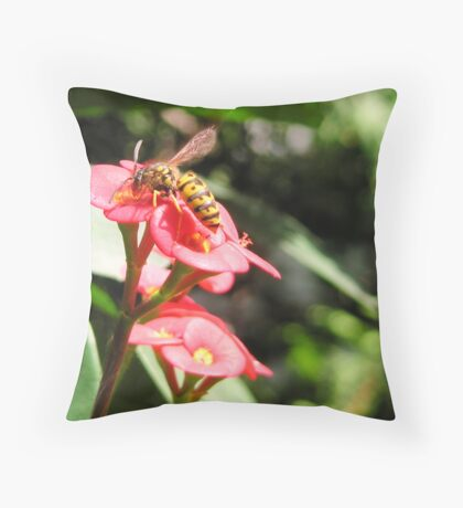 """Crown of Thornes """"flower"""" with Yellow Jack Throw Pillow"""