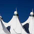 Curves in the Roof by Brendon Perkins