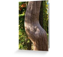 Pregnant Tree Greeting Card