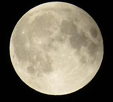 Goodnight Moon by shutterbug2010