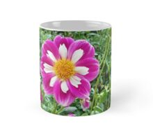 In the Dahlias 16 Mug