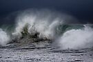 Winter Waves At Pipeline 8 by Alex Preiss