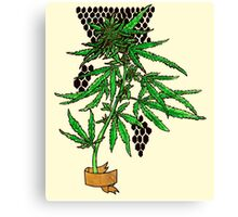 sativa and banner Canvas Print