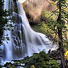 The Upper Falls of Falls Creek Falls by Don Siebel
