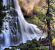 The Upper Falls of Falls Creek Falls by Don Siebel